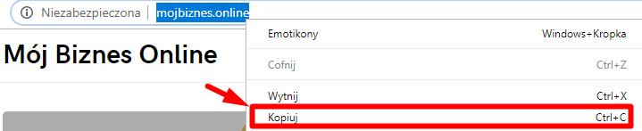 Skopiuj dokłądny adres strony z przeglądarki
